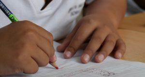 domowe nauczanie